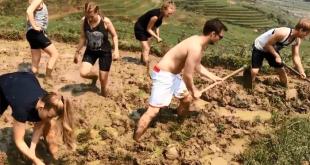 Hình ảnh du khách nước ngoài cuốc đất đang khiến cộng đồng mạng xôn xao